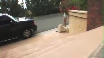 Hot Teen Blonde Girl Fucked By Big Cocks Anal Sex Gangbang